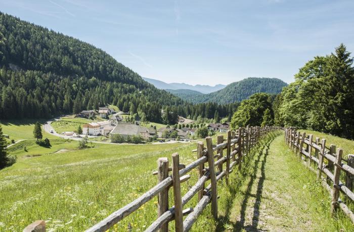 Hotel Zum Hirschen in Südtirol: Blick von Weitem auf Umgebung und grüne Natur des Hotels
