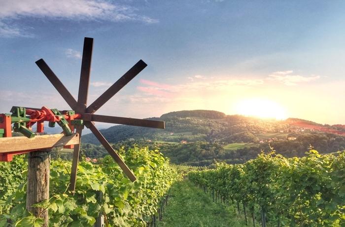 Auch die Steiermark ist als Reiseziel für Gourmets nicht zu unterschätzen