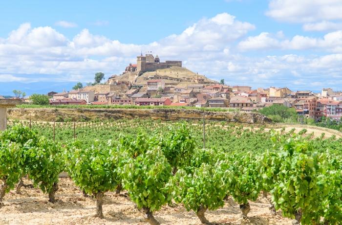 Weinreisen in das Rioja-Gebiet sind ein Muss für jeden Kenner