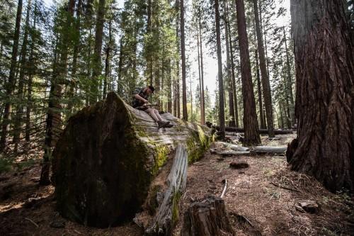 Alina Atzler_Nähe Yosemite National Park, Kalifornien, USA