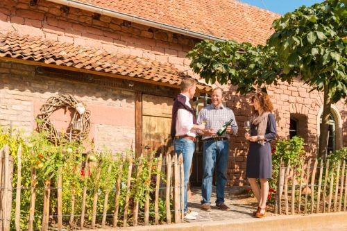Bild 3 Besuch beim Weingut Bürgermeister Schweinhardt Nahe Quelle Dominik Ketz Rheinland-Pfalz-Tourismus GmbH_500x333