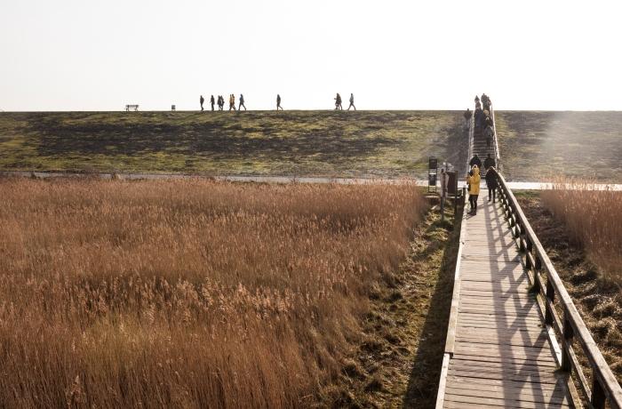 Tourismuscamp 2019: Blick auf Deich von Brücke in Sankt Peter Ording