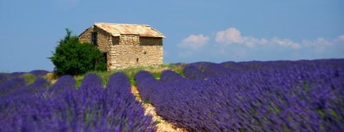 Kay Ludwig_Provence, Frankreich
