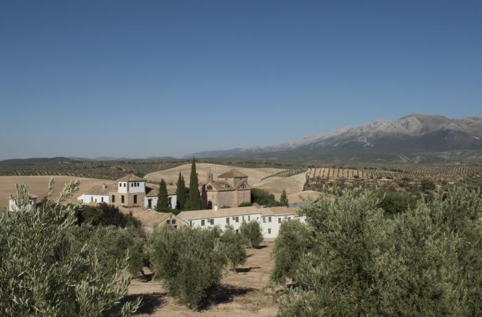 Die Landschaft rund um das Hotel