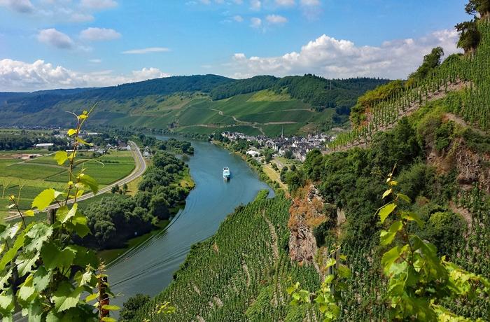 Weinreisen in Rheinland-Pfalz